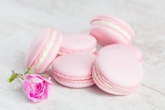 Pastel pink macaroons with rose Stock Photos