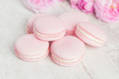 Pastel pink macaroons with rose, selective focus Royalty Free Stock Photos