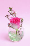 Pastel pink rose and wax flower in a glass. Pastel pink rose bud and wax flower in a glass with transparent glass stones, against, light pink background, festive royalty free stock photos