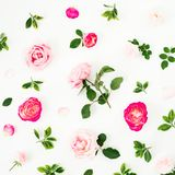 Pastel pink roses flowers and green leaves on white background. Flat lay, top view pattern. Pastel pink roses flowers and green leaves on white background. Flat stock illustration