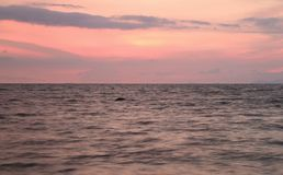 Pastel pink and smoky gray color tropical sunset sky over the gentle wave sea Stock Photo