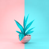 Pastel Plant and Background Stock Image