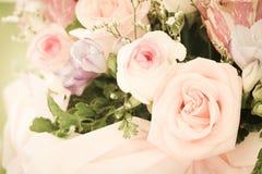 Pastel rose Royalty Free Stock Photo
