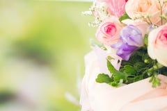 Pastel rose Stock Image