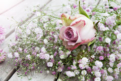 Pastel Rose in front of a bouquet of flowers Royalty Free Stock Photo