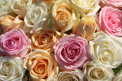 Pastel roses. A floral arrangement made off big pastel orange, white and pink roses Royalty Free Stock Photo