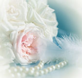 Pastel roses,pearl and feather Stock Photos