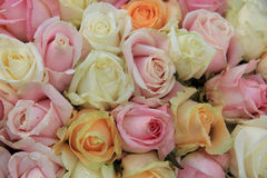Pastel roses in a wedding arrangement Stock Images