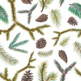 Pastel background pattern with spruce branches. Pastel seamless background pattern with spruce branches and cones Royalty Free Stock Photo