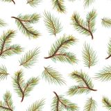 Pastel  background pattern with spruce branches. Pastel seamless background pattern with spruce branches Royalty Free Stock Image