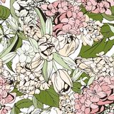 Pastel seamless pattern with tulips and hydrangeas. Botanical illustration Stock Photography