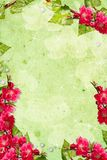 Pastel  spring background Stock Images
