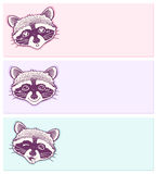 Pastel stickers with funny raccoons.  Stock Photography