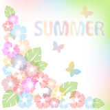 Pastel summer background with flowers and butterfly. Stock Photos