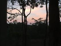 Pastel sunrise. In Phu Rua, Loei, Thailand stock image