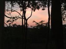 Pastel sunrise. In Phu Rua, Loei, Thailand royalty free stock photography