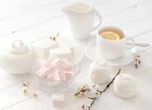 Pastel tea set with zefir and sweets Royalty Free Stock Images