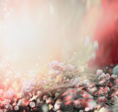 Pastel toned floral nature background Royalty Free Stock Photos