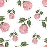 Pastel watercolor hand drawn pink flower seamless Royalty Free Stock Photos