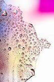 Pastel Waterdrops Stock Image