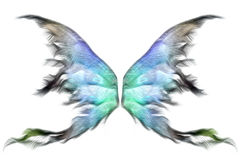 Pastel wings Stock Photography
