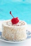 Pastelaria do coco Imagem de Stock Royalty Free
