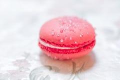 Pastelarias francesas de Macarons Fotografia de Stock Royalty Free