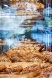 Pastelarias na janela de vidro Imagem de Stock