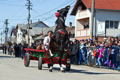 Pastele Cailor Festival. Image taken at the Tudorita festival in Targoviste, Romania. Tudorita or Pastele Cailor festival took place March 3. Horse and carrige Royalty Free Stock Image
