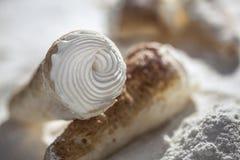 Pasteles cremosos Fotografía de archivo libre de regalías