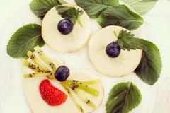 Pasteles de queso como cara animal con las bayas frescas, efecto retro-insta Fotografía de archivo libre de regalías