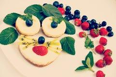 Pasteles de queso como cara animal con las bayas frescas, efecto retro-insta Imagen de archivo libre de regalías