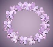 Pastelkleurachtergrond met lilac bloemen Royalty-vrije Stock Afbeelding