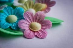 Pastelkleurbloemen Royalty-vrije Stock Afbeeldingen