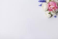Pastell blommar för besökkortet Royaltyfria Foton