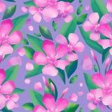 Pastell färgad modell av oleanderblommor vektor illustrationer