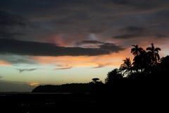 Pastell färgad solnedgånghimmel med svart gömma i handflatan och tropiska vegetationkonturer på förgrunden Arkivbild