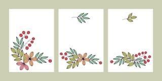 Pastell färgade eleganta sidor, och blommor med blom- kortmallar för åder ställde in, vektorn royaltyfri illustrationer