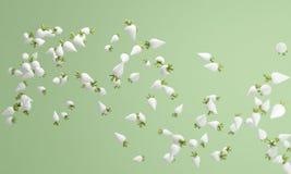 Pastell- Farb-Rübe daikon Hintergrund, reizendes Pastell-backgroun Stockfoto