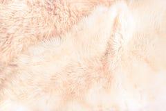 Pastell och beige pälsslut upp bakgrund Textur modell Arkivfoto