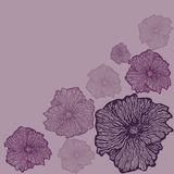 Pastellblumenhintergrund Stockbilder