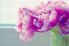Pastellblumenstrauß Lizenzfreies Stockbild