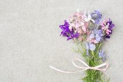 Pastellblumenstrauß von wilden Blumen u. von Bogen auf grauem Steinkopienraum Lizenzfreie Stockfotos
