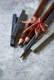Pastelle und Bleistifte mit einem trockenen Blatt Lizenzfreie Stockfotos