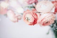 Pastellfärgad blom- bakgrund med nätta blommor Arkivfoto
