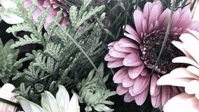 Pastellfärgad blom- skärm, Youtube kanal Art Banner fotografering för bildbyråer