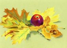 Pastellfärgad målning - rött äpple och höstsidor Arkivfoto