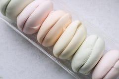 Pastellfärgade kulöra marshmallower i ett packeslut upp royaltyfri bild