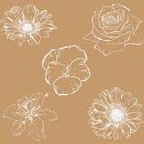 Pastellhintergrund mit Hand gezeichneten Konturnblumen Verschiedene Knospen Blumenvektornahtloses Muster vektor abbildung