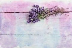Pastelllavendelhintergrund Stockfotografie